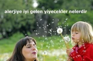 polen alerjisi teshisi